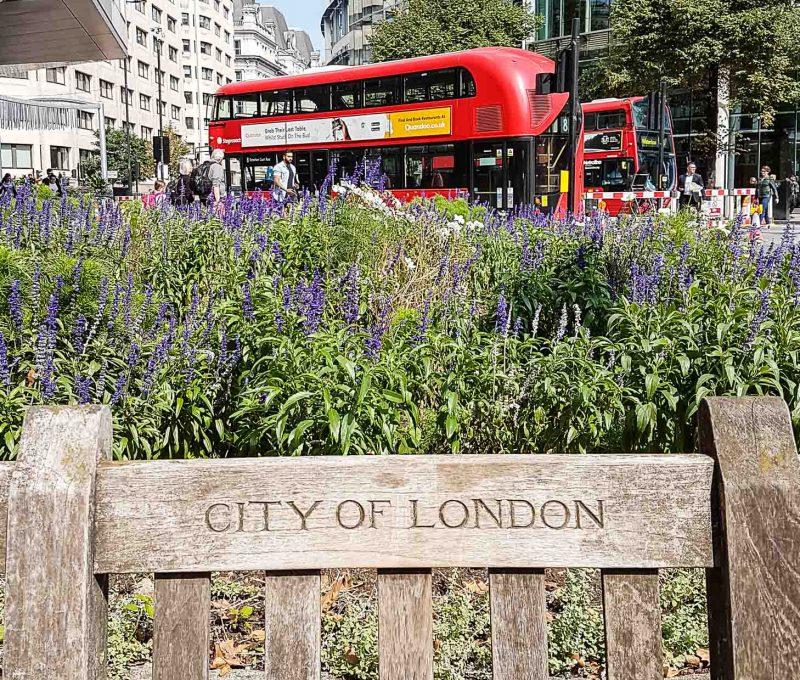 londyn-bus